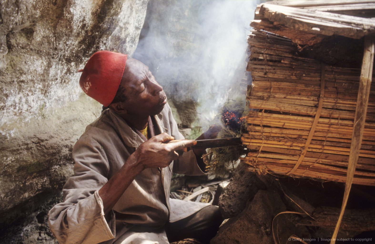 Collecting Honey, Cameroon, Mount Oku, Bamenda Highlands, Collecting Honey From A Hive In The Forest,